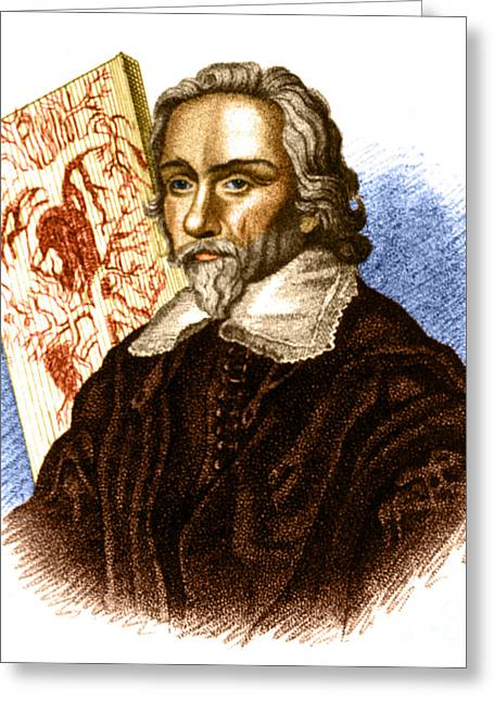 Fertilization Greeting Cards - William Harvey, English Physician Greeting Card by Science Source