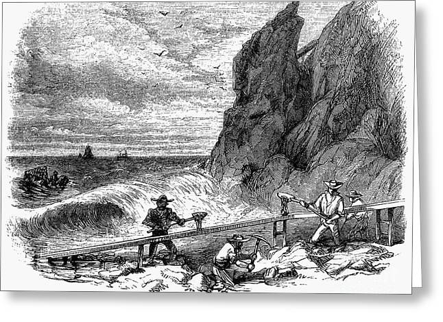 1850s Greeting Cards - California Gold Rush Greeting Card by Granger