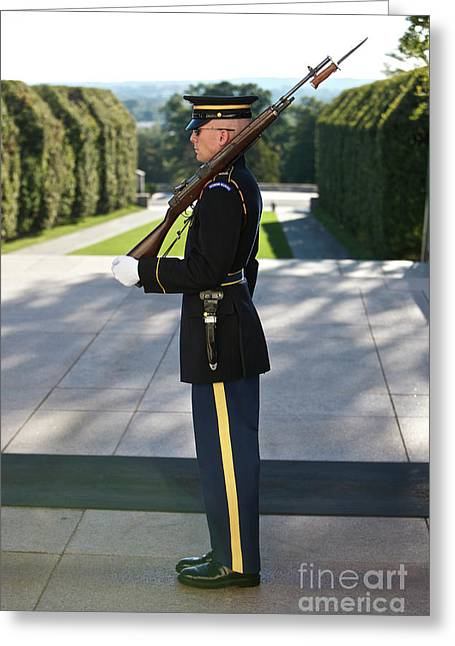 Bayonet Greeting Cards - Honor Guard At The Tomb Greeting Card by Terry Moore
