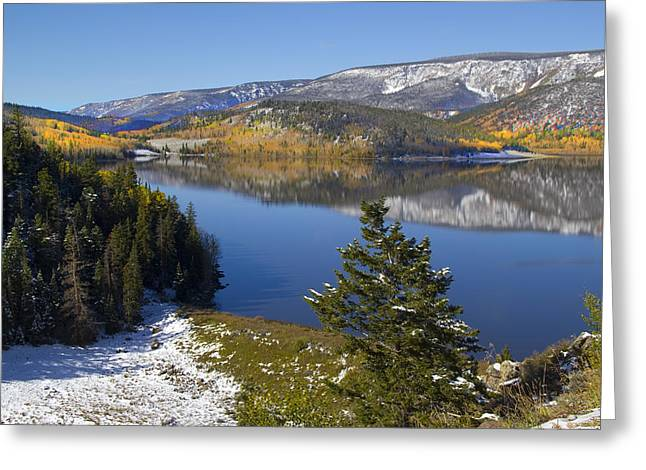 Fall Photographs Greeting Cards - Rocky Mountain Fall Greeting Card by Mark Smith