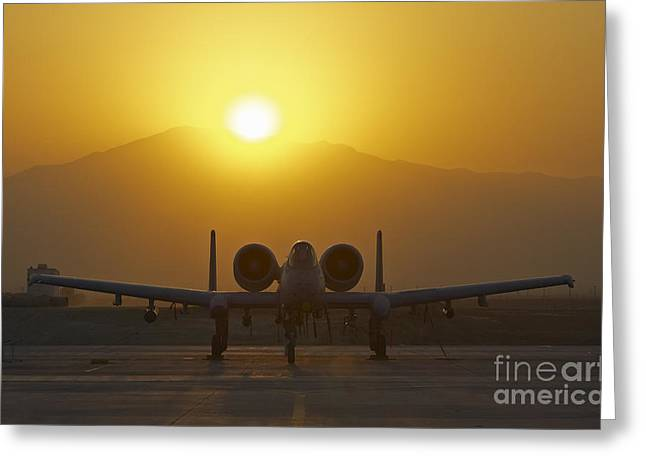 Nato Greeting Cards - A-10 Warthog Greeting Card by Tim Grams