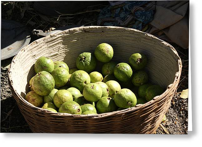 A Basket Full Of Guavas Just Outside Bhopal Greeting Card by Ashish Agarwal