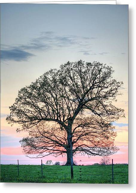A Beautiful Evening Greeting Card by JC Findley