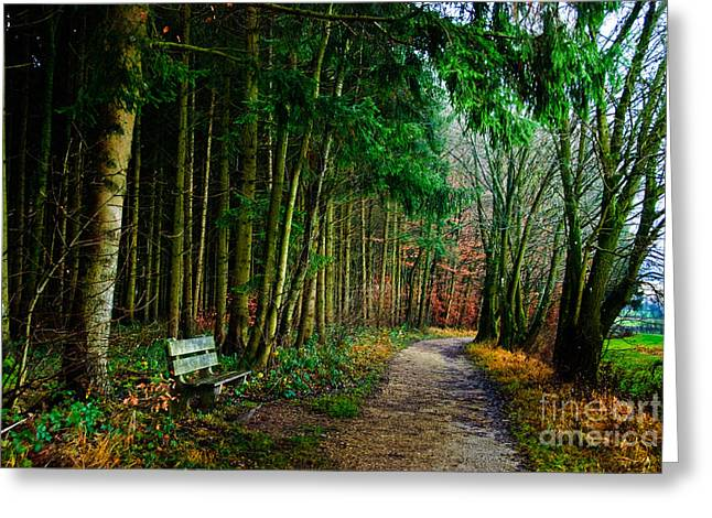 Out Of The Woods Greeting Cards - A Beautiful Memory Greeting Card by Syed Aqueel