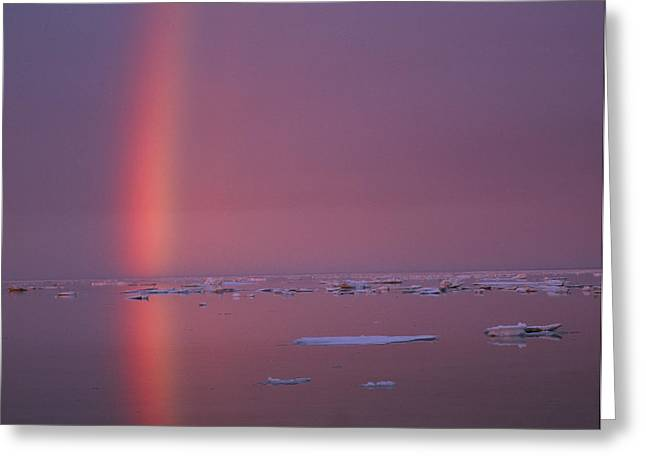 Arctic Circle Greeting Cards - A Beautiful Rainbow Rises Greeting Card by Paul Nicklen