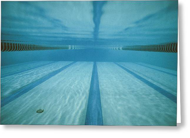 Water Swimming Pool Greeting Cards - A Below-the-surface View Of A Swimming Greeting Card by Bill Curtsinger