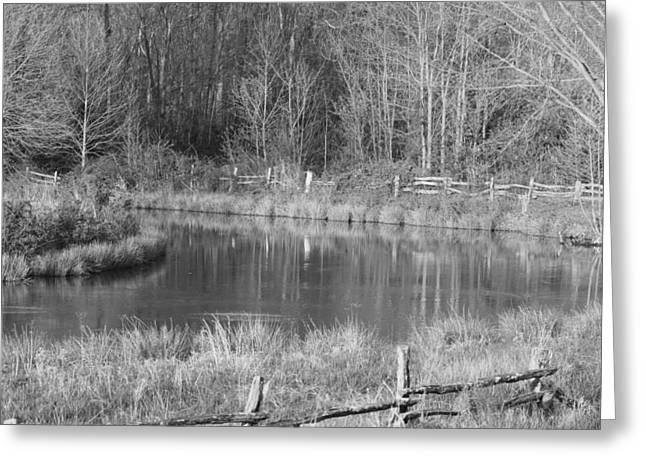 Southern Indiana Greeting Cards - A Bend in the Creek Greeting Card by Brandi Allbright