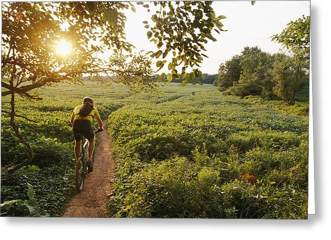 A Bicyclist Rides On A Path Greeting Card by Skip Brown