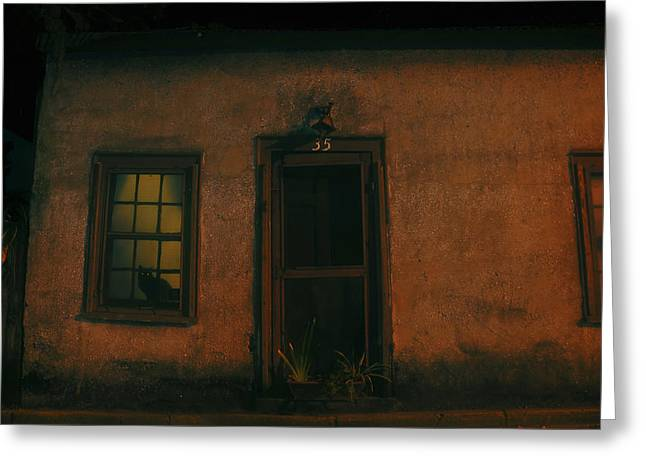 Florida House Greeting Cards - A black cats night Greeting Card by David Lee Thompson