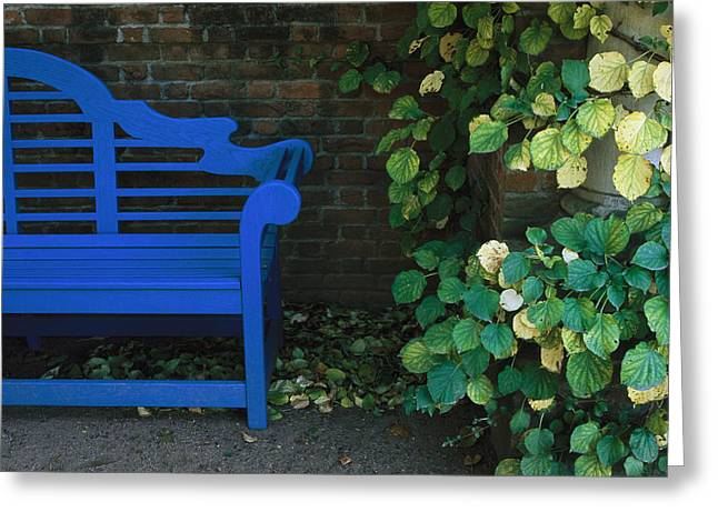 Benches And Chairs Greeting Cards - A Brightly Colored Blue Bench Greeting Card by Paul Damien