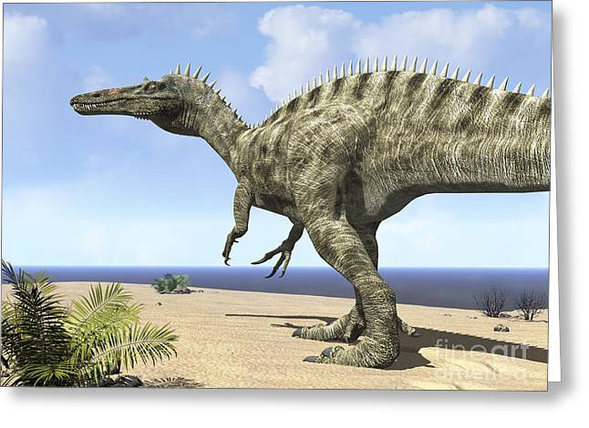 Saurischia Greeting Cards - A Carnivorous Suchomimus Wanders Greeting Card by Walter Myers