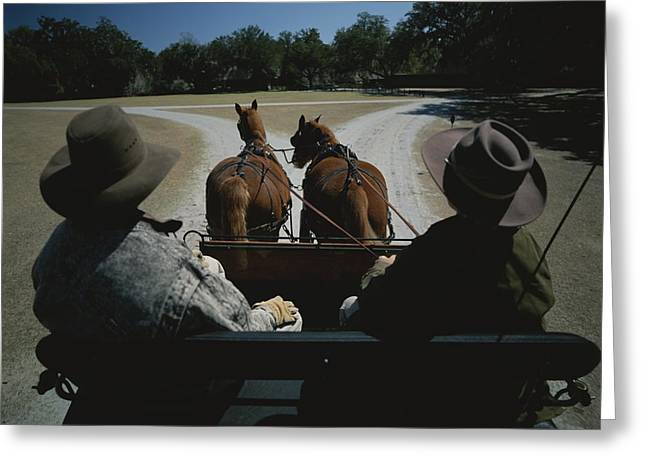 North Fork Greeting Cards - A Carriage Pulled By Two Horses Greeting Card by Michael Melford