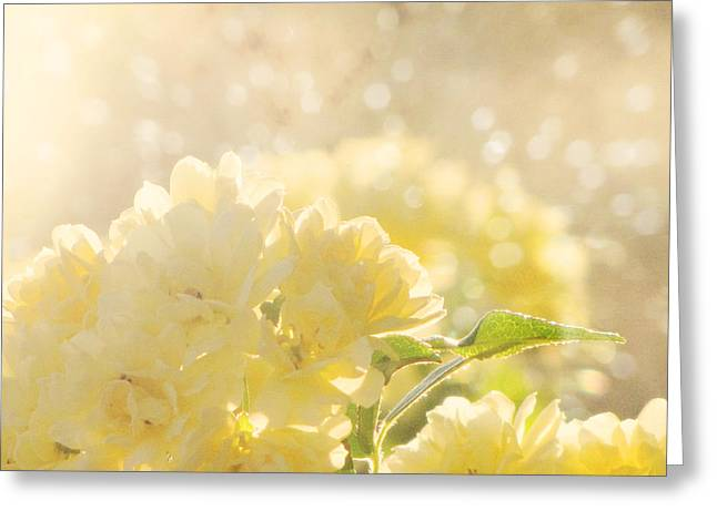 Amy Tyler Photography Greeting Cards - A Chance of Showers Greeting Card by Amy Tyler