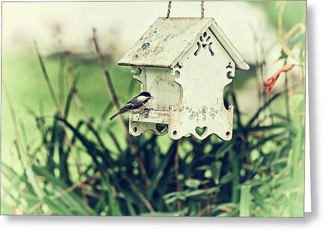 Bird-feeder Greeting Cards - A Chickadees Visit Greeting Card by Karol  Livote