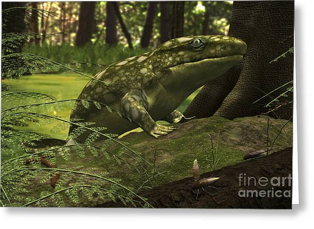 Recently Sold -  - Rhacophorus Greeting Cards - A Close-up Of A Three Foot Long Greeting Card by Walter Myers