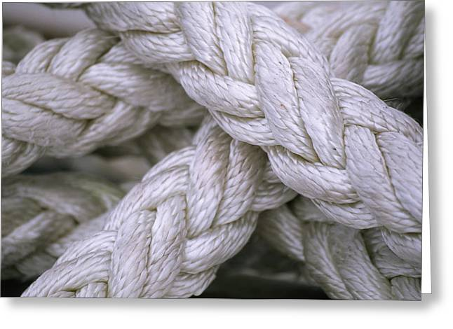 Prince William Greeting Cards - A Close View Of Thick, Weaved Rope Greeting Card by Michael Melford