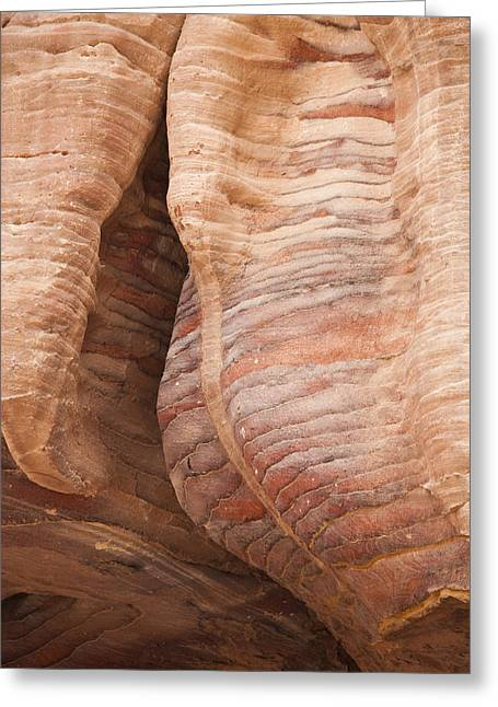 A Close View The Layered Sandstone Greeting Card by Taylor S. Kennedy