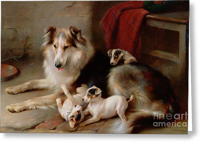 Playful Greeting Cards - A Collie with Fox Terrier Puppies Greeting Card by Walter Hunt