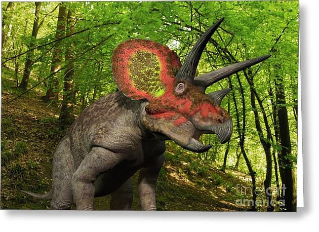A Colorful Triceratops Wanders Greeting Card by Walter Myers