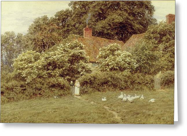 Mother Goose Greeting Cards - A Cottage at Farringford Isle of Wight Greeting Card by Helen Allingham