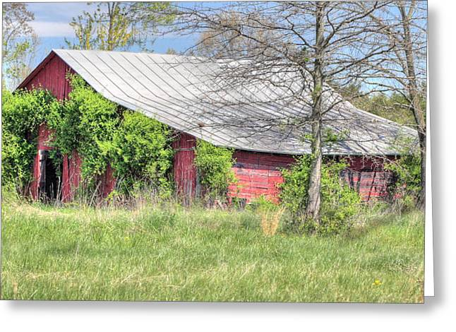 Tin Roof Greeting Cards - A Country Spring Greeting Card by JC Findley