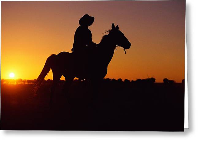 Cowgirl And Cowboy Greeting Cards - A Cowboy And His Horse Ride Greeting Card by Medford Taylor