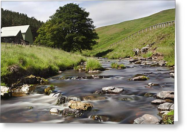 Ground Level Greeting Cards - A Creek Running Past Houses Cheviot Greeting Card by John Short