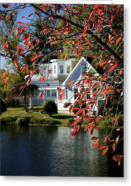 Babylon Greeting Cards - A Curtain of Fall Red Greeting Card by Vicki Jauron