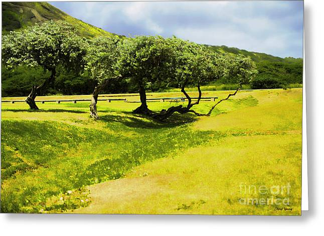 Hawaiian Food Greeting Cards - A day in the Park Greeting Card by Cheryl Young
