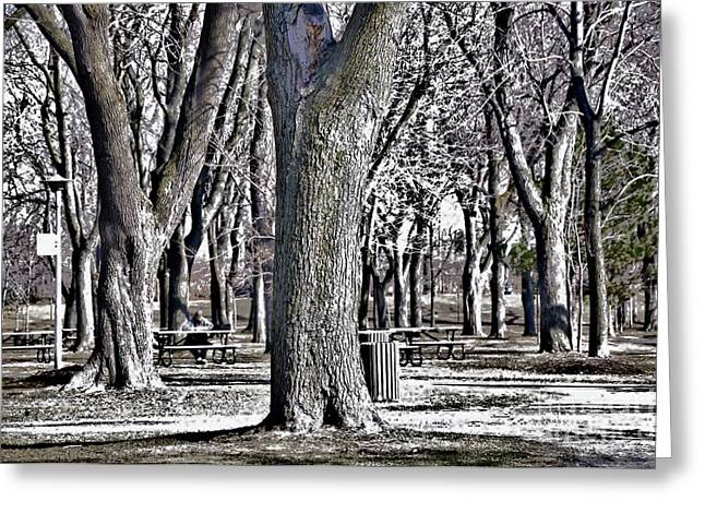 Park Scene Greeting Cards - A Day in the Park Greeting Card by Reb Frost