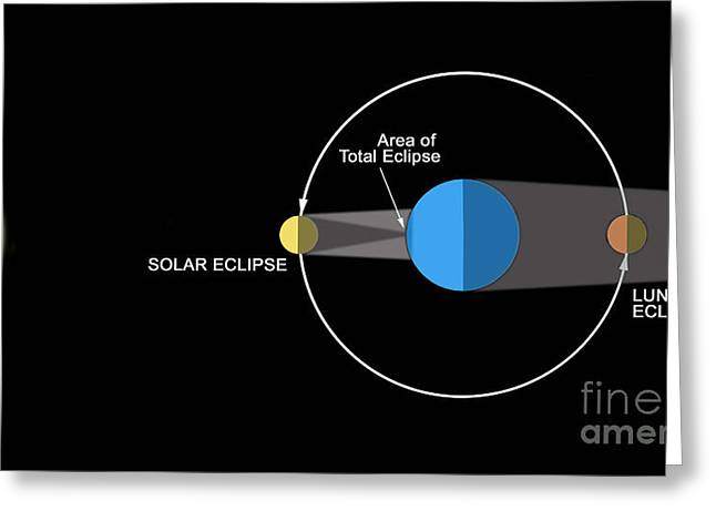 Solar Eclipse Digital Greeting Cards - A Diagram Illustrating How Eclipses Greeting Card by Ron Miller