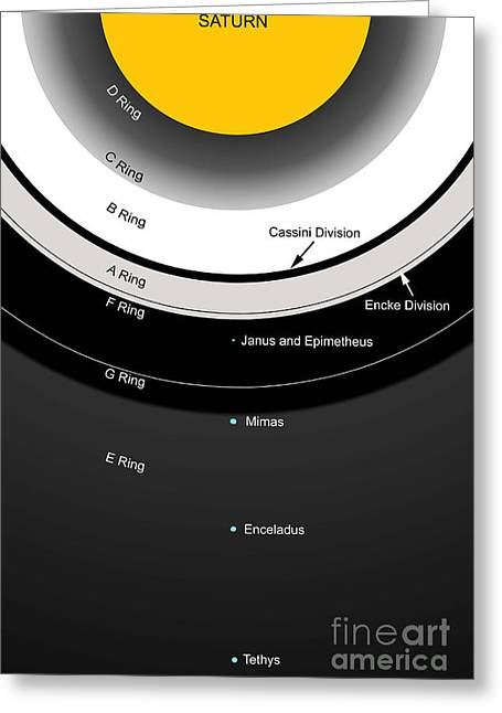 Ring Systems Greeting Cards - A Diagram Showing The Major Features Greeting Card by Ron Miller