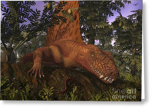 Large Scale Digital Art Greeting Cards - A Dimetrodon Amongst Alethopteris Ferns Greeting Card by Walter Myers