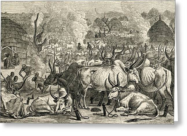 A Dinka Cattle Park, Southern Sudan Greeting Card by Ken Welsh