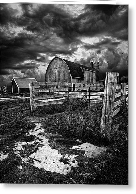 Phil Koch Greeting Cards - A Distant Thought Greeting Card by Phil Koch