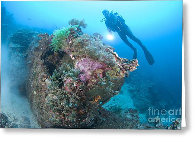 Misfortune Greeting Cards - A Diver Explores The Wreck Of A U.s Greeting Card by Steve Jones