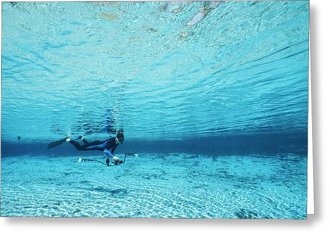 Aquatic Split Level Views Greeting Cards - A Diver Swims Through Crystal Rivers Greeting Card by Raul Touzon