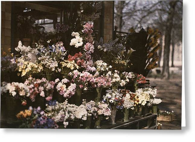 Southern France Greeting Cards - A Diversity Of Flowers Is Set Greeting Card by Maynard Owen Williams