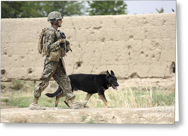 Foot Patrol Greeting Cards - A Dog Handler Of The U.s. Marine Corps Greeting Card by Stocktrek Images