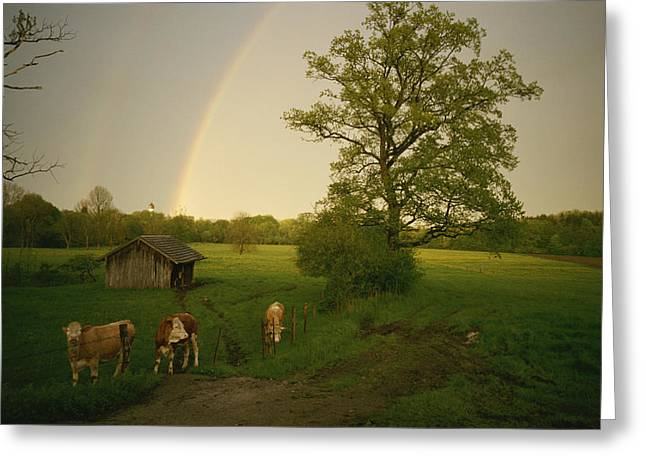 A Double Rainbow Arcs Over A Field Greeting Card by Carsten Peter