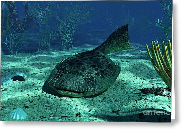 Existence Greeting Cards - A Drepanaspis On The Bottom Greeting Card by Walter Myers