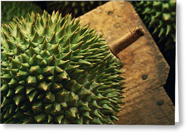 One Point Perspective Greeting Cards - A Durian Fruit - Popular In South East Greeting Card by Justin Guariglia