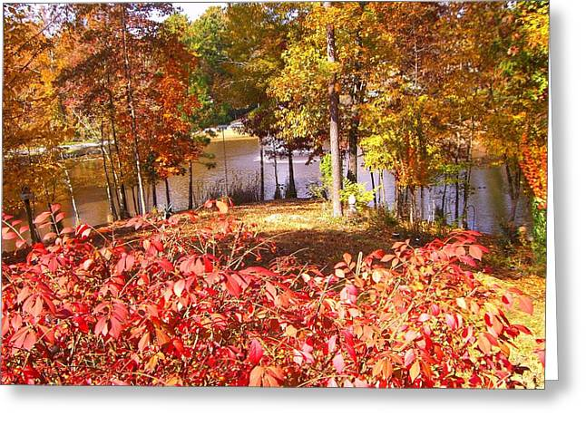 Green Day Greeting Cards - A Fall Day Greeting Card by Mary Ann Southern