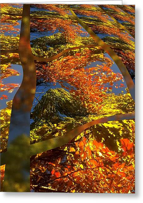 A Fall Perspective Of Color Greeting Card by Rene Crystal