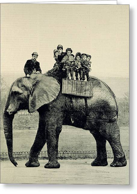 Engraving Greeting Cards - A Farewell Ride on Jumbo from The Illustrated London News Greeting Card by English School
