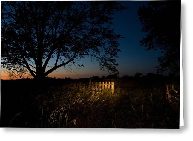 Release Greeting Cards - A Farm Near Princeton, Nebraska Greeting Card by Joel Sartore