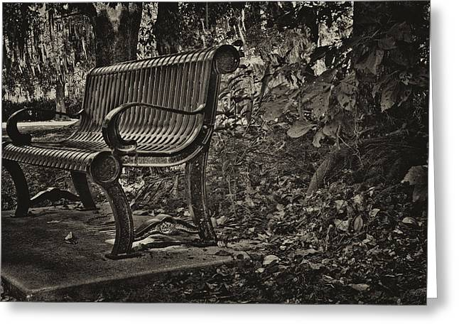 Park Benches Greeting Cards - A Fine Place to Think Greeting Card by William Jones