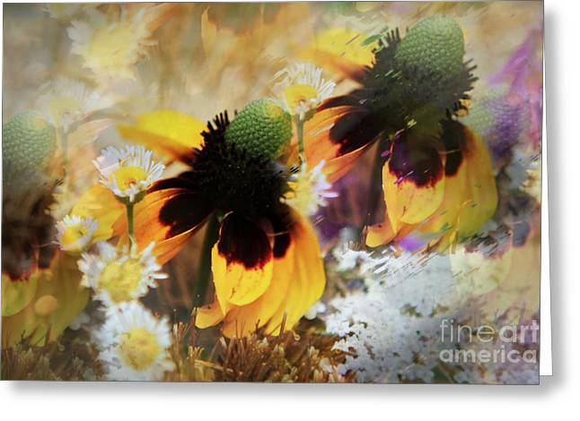 Wild Flowers Of Texas Greeting Cards - A Flowers Dream Greeting Card by Lori  Mellen-Pagliaro