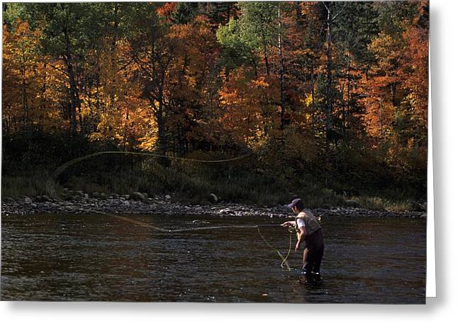 Plant Color Changes Greeting Cards - A Fly-fisherman Lays Out A Perfect Cast Greeting Card by Paul Nicklen