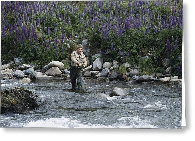 Fishing Creek Greeting Cards - A Fly Fishing Guide Casts His Line Greeting Card by Gordon Wiltsie